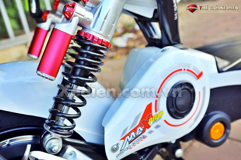 động cơ xe điện htbike maxpro