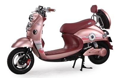xe-dien-dibao-vip-rider