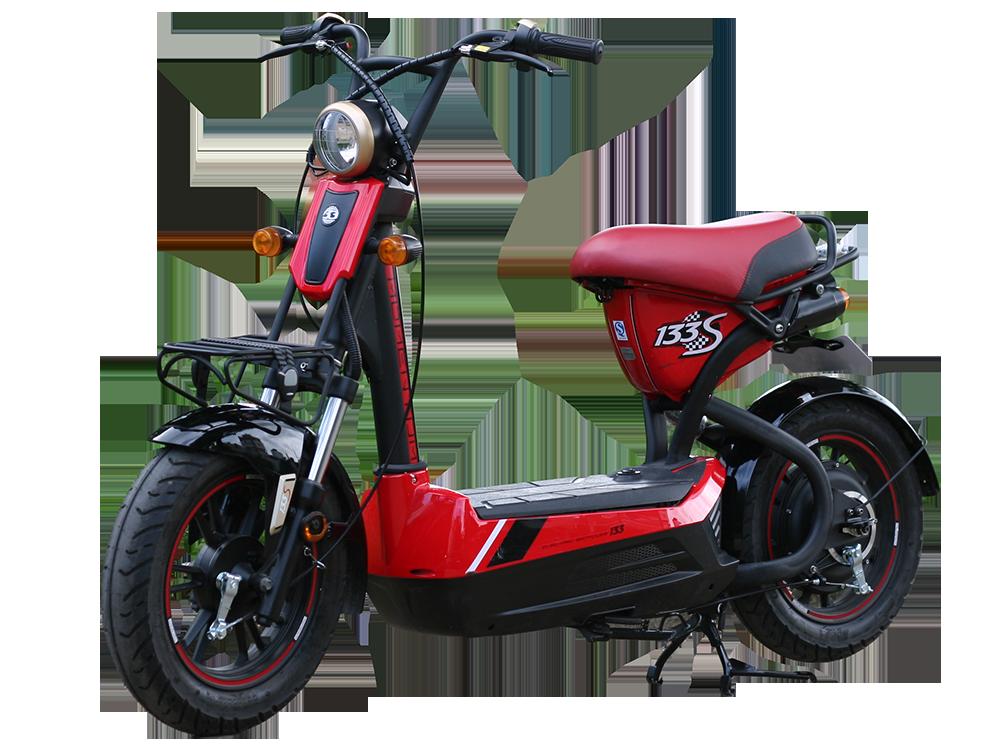 Xe đạp điện Giant M133s Nhập Khẩu Chính Hãng Xediencomvn